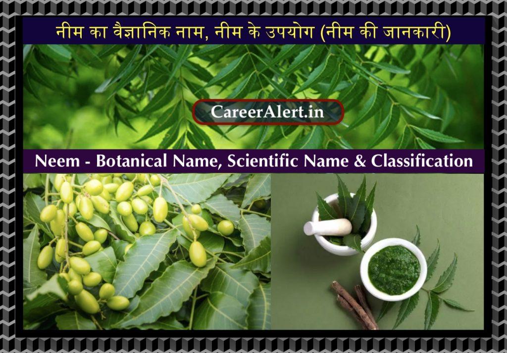 Neem Ka Vaigyanik Naam, नीम का वैज्ञानिक नाम